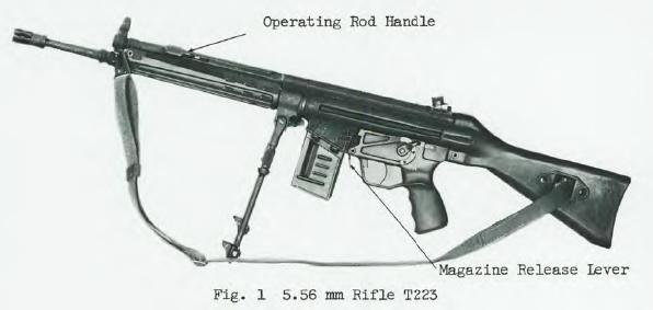 H&R T223 rifle